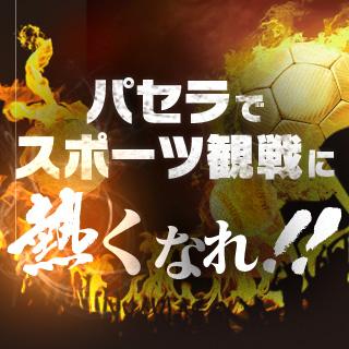 サッカー・野球などスポーツ観戦に熱くなれ!!