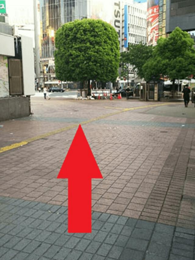 7.右手の改札を通りすぎましたら、左斜め方向に向かっていきます。
