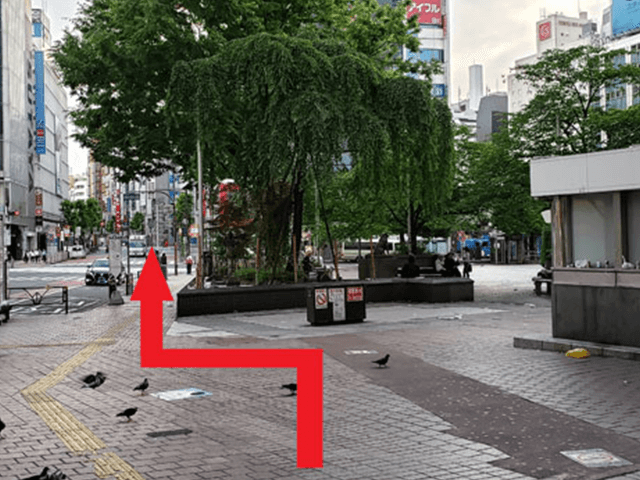 5.広場に着きましたら、矢印の方向へ進んで横断歩道を真っ直ぐ渡って下さい。
